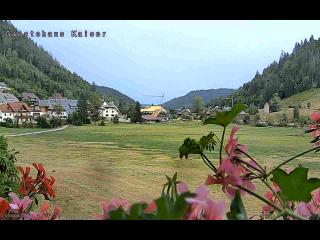 Webcam Menzenschwand