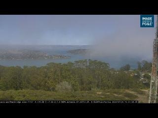 Wetter Webcam San Francisco