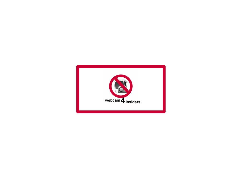 Seelbach Webcam